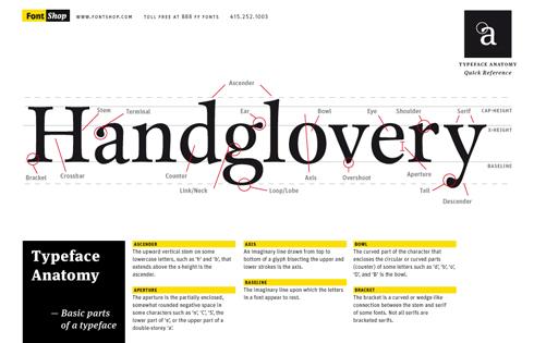 typeface_anatomy