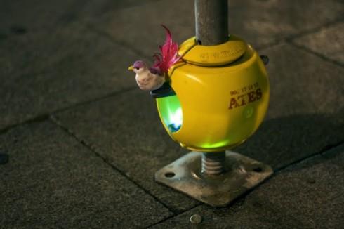 nidos-urbanos-3