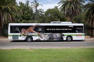 publicidad_autobus_zoo
