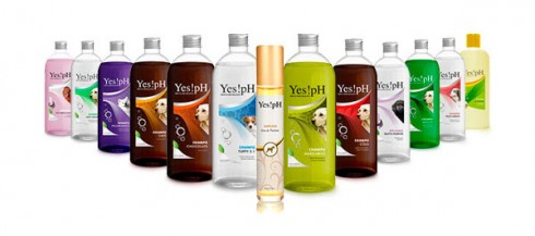 Packaging YespH