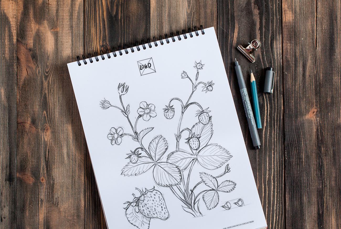 ilustraciones_indi_essences_01